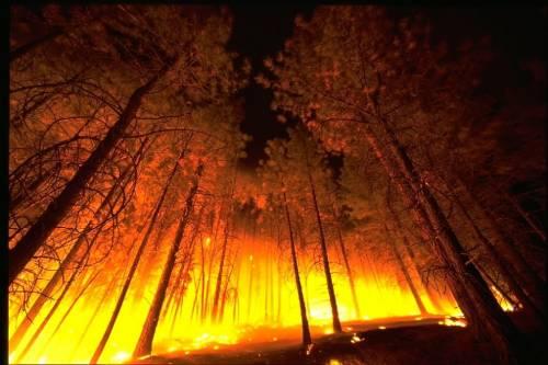 Инструкция По Эвакуации При Пожаре В Школе